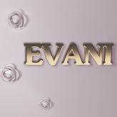 logo-evani